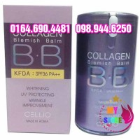 Collagen bb