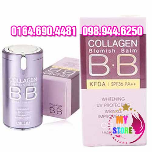 Collagen bb-3