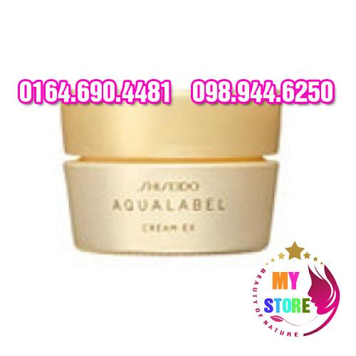 Shiseido Aqualabel Cream EX 1