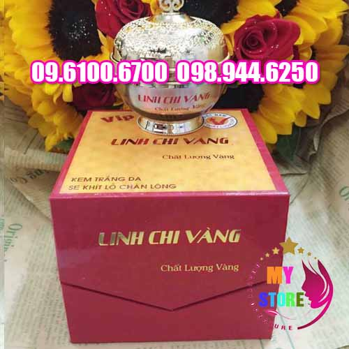 kem linh chi vang-2